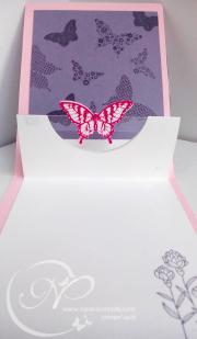 Inside butterfly